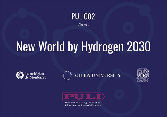 puli002 2019a
